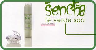 Concentrado Sencha Té Verde de Noyles 250ml